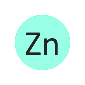 The role of zinc in the plant