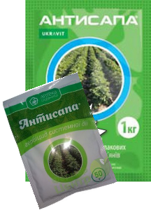 Antisapa50g+1kg